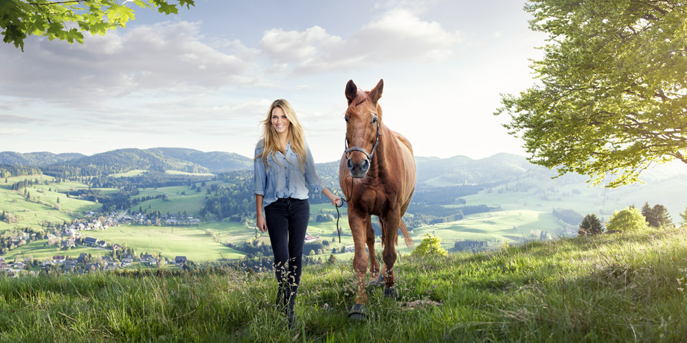 Saddle Me Startseite